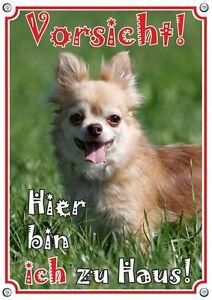 Warning Sign - Chihuahua Longhair Chien En Métal Signe Durable