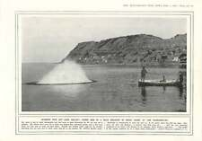 "1916 Bombing Fish Sport Dardanelles ""v"" Beach Shelled By Turks"