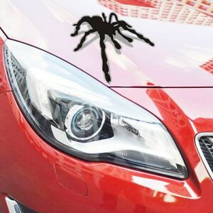 Refit-Decoration-New-3D-Spider-Styling-Car-Accessories-Funny-Car-Sticker