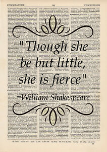 ART PRINT OLD ANTIQUE BOOK PAGE Vintage Dictionary SHAKESPEARE FIERCE QUOTE wall