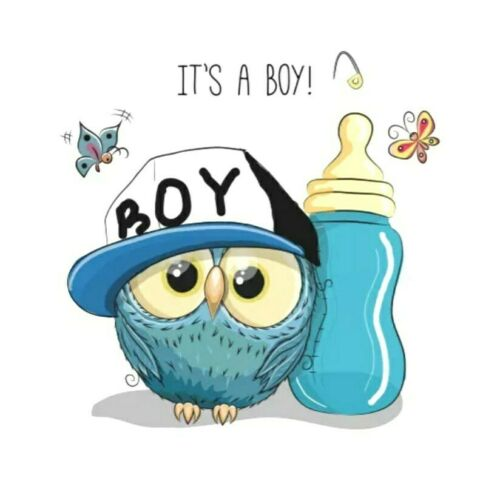 "Its a Boy Patch Blue Owl Iron On Graphic Applique 2.17/"" X 2.20/"" Baby Shower"