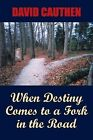When Destiny Comes to a Fork in the Road by David Cauthen (Paperback, 2013)
