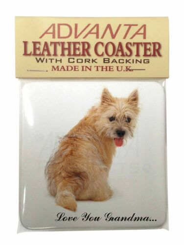 AD-CT1LYGSC Cairn Terrier /'Love You Grandma/' Single Leather Photo Coaster Anima