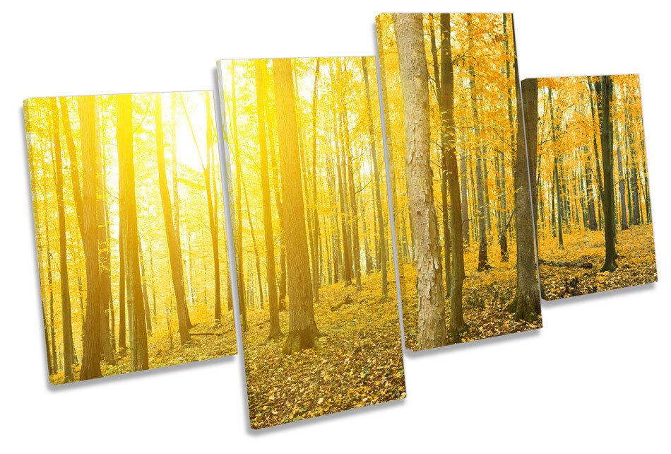 GIALLO Foresta TRAMONTO PAESAGGIO Multi Canvas Wall Art Art Art Boxed incorniciato 86a474