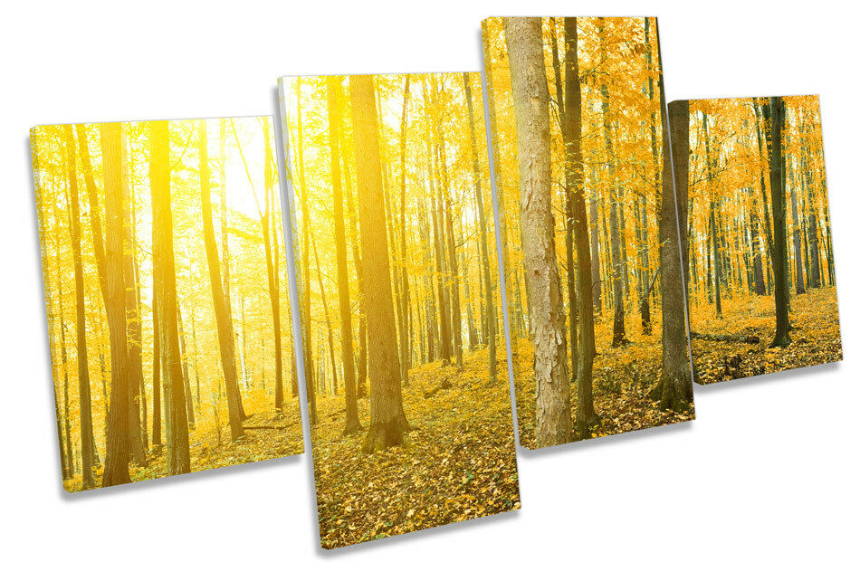 Bosque amarillo Sunset pa Paisaje Multi tela pa Sunset rojo  arte En Caja Enmarcado 392bb7