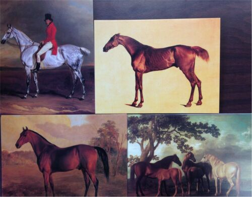 Horses 20 Blank Greeting Cards w Envelopes in Box Four Fine Art Designs WZ47749