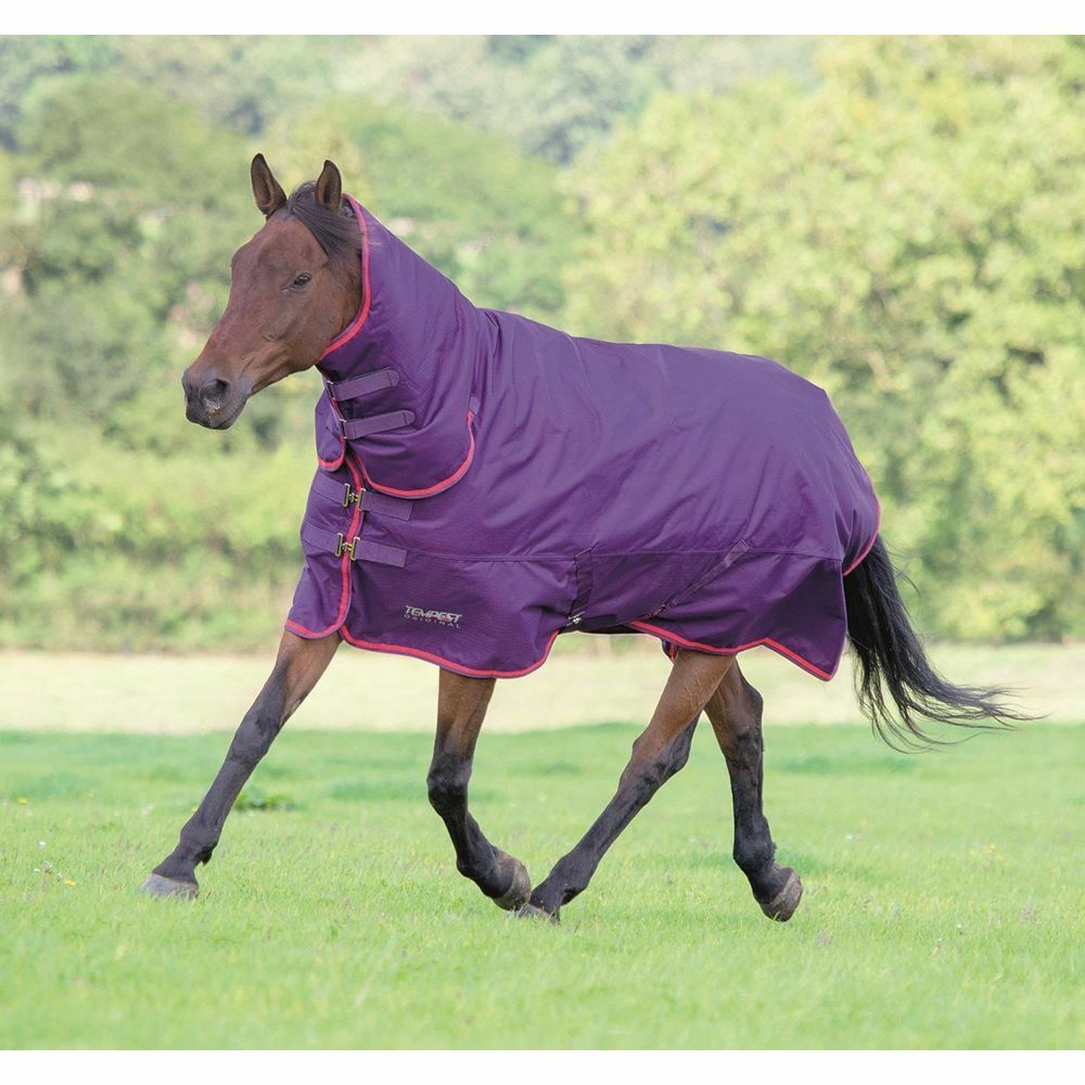 Shires Tempest Original 300 Combo Turnout Rug Purple Red 4'0
