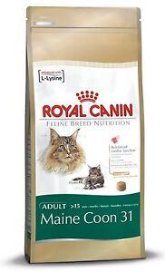ROYAL-CANIN-Maine-coon-31-GATTO-ADULTO-asciutto-CIBO-PER-GATTI-BILANCIATO-E