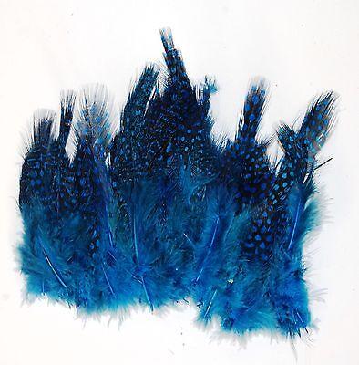 """10 Pcs DYED TURQUOISE English Ringneck PHEASANT Feathers 20-26/"""" Costume//Hats"""