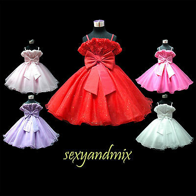 USD63A Dance Pageant Christmas Baby Party Wedding Flower Girls Dress 1 to 14 Yrs