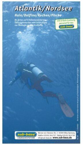sub-base Logbuch Einlagen Atlantik Nordsee SSI Lochung NEU !!!