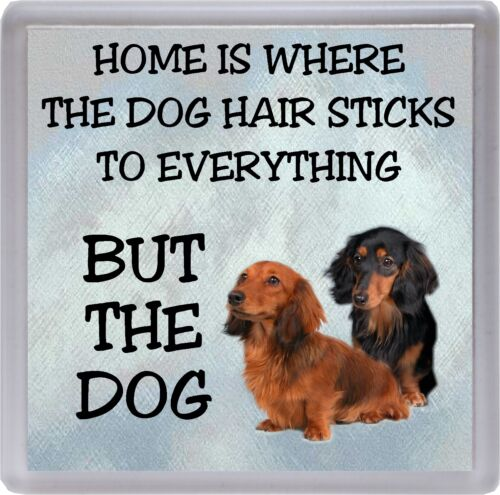 "Dachshund Coaster /""Home is Where the Dog Hair Sticks ..../"" by Starprint Long"