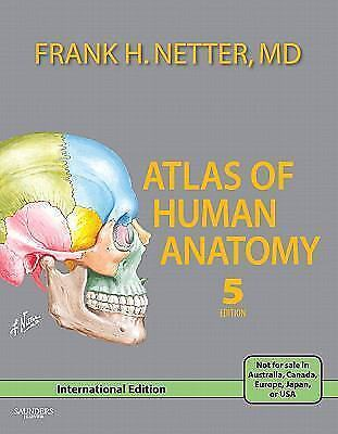 Atlas Of Human Anatomy By Frank H Netter Book Other Ebay