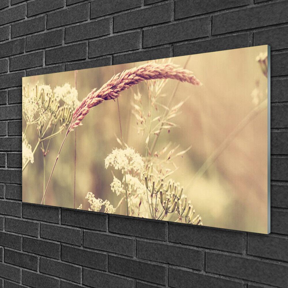 Image sur verre acrylique Tableau Impression 100x50 Floral Plantes Sauvages