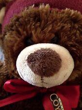 Arizona Phoenix Coyotes Build A Bear Brown Teddy Bear Collectible Soft Lovey