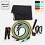 SYDNEY-stock-11Pcs-Set-Resistance-Bands-Elastic-Tubes-Home-Gym-Fitness-Yoga thumbnail 2