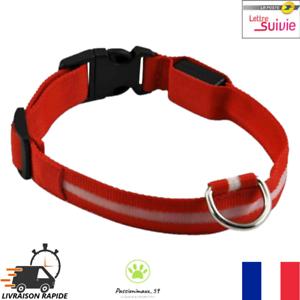 Collier-Nylon-Lumineux-a-Led-Rouge-pour-Chien-ou-Chat-XS-S-M-L-XL-Neuf-FR
