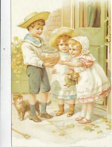 The-Longing-Look-from-Cats-Postcard-unused-VGC
