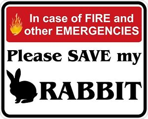 In-Case-of-Fire-Save-My-Rabbit-Decals-Stickers