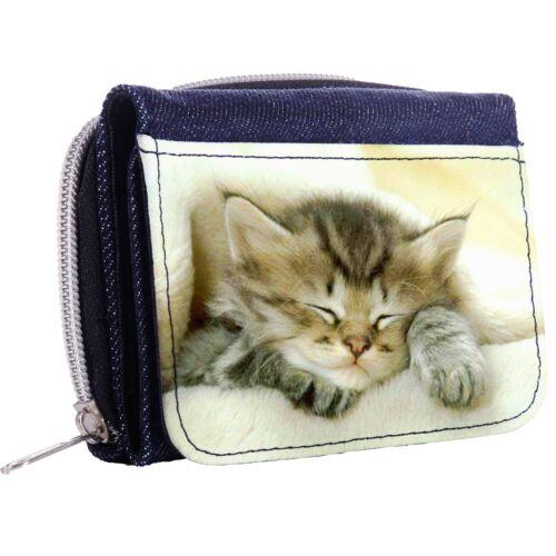 Cute Kitten Sleeping On A Soft Blanket Tri-Fold Half Wallet w// ID Window Button