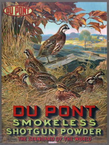 "Gun Powder advertisement antique hunting Du Pont quail 24/""x17/"" Art Print"