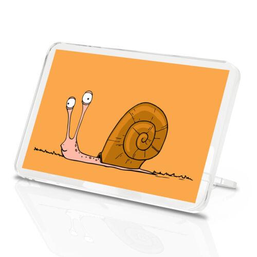 Garden Slug Animal Kids Gift #15638 Funny Snail Classic Fridge Magnet