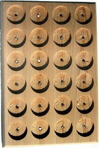 24-SPOT-CEDAR-PATHTAG-GEOCOIN-DISPLAY-NEW
