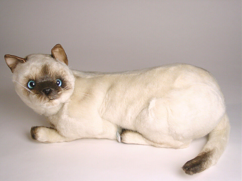 Seal Point Siamese Cat by Piutre, Hand Made in Italy, Plush Stuffed Animal NWT