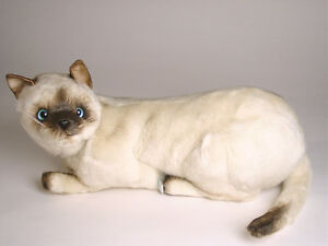 bf6e94df2a34 Seal Point Siamese Cat by Piutre, Hand Made in Italy, Plush Stuffed ...