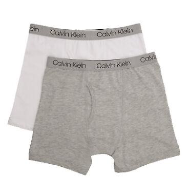 2-Pack Big Boys Cotton Stretch Logo Boxer Briefs