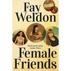 Female Friends by Fay Weldon (Paperback, 2014)