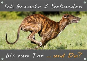 Panneau d'avertissement pour chien - Greyhound Greyhound Metal Sign Top Tip