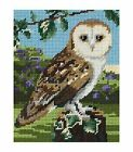 Owl Anchor Tapestry Kit Starter MR951
