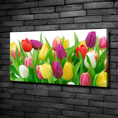 Leinwandbild Kunst-Druck 100x50 Bilder Blumen /& Pflanzen Bunte Tulpen
