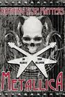 Metallica: Nothing Else Matters: The Graphic Novel by Jim McCarthy (Paperback / softback, 2014)