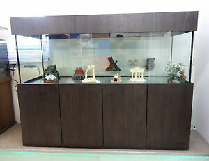 "Fish & Aquariums Aquariums & Tanks Freshwater Custom Tropical Aquarium 72""lx22""hx18""w Tank & Cabinet Made In Uk"