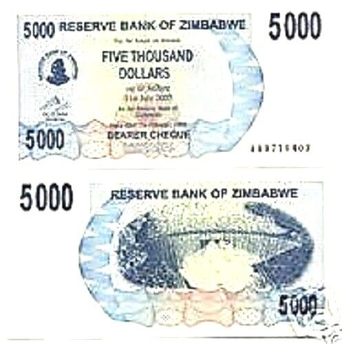ZIMBABWE 5000 5,000 P45 2007 DAM *AA* UNC BEARER CHECK CURRENCY MONEY BANK NOTE