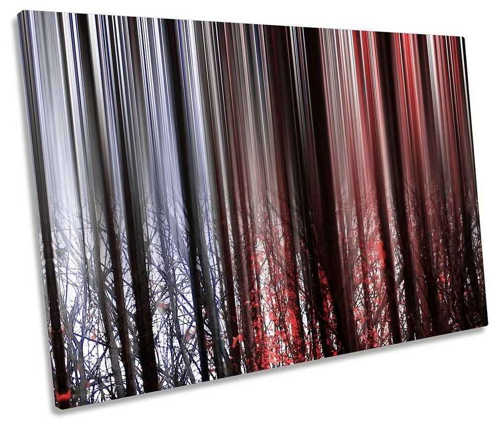rot Forest Twilight Picture SINGLE CANVAS WALL ART Print