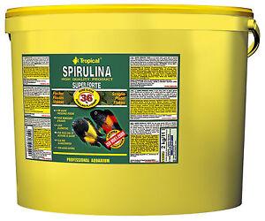 Tropical Spiruline Super Forte 36% 11000 Ml ( 6,60€/ Litre)