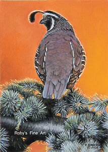 034-Valley-Quail-At-Sunset-034-California-Quail-8-034-x10-034-by-Realism-Artist-Roby-Baer-PSA