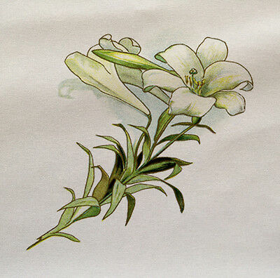 Fiore ragazza stampato su tessuto Pannello di fare un Cuscino Tappezzeria Craft