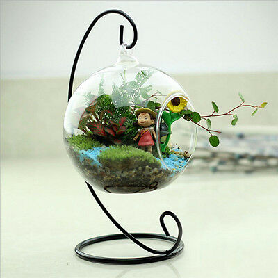 Clear Glass Round with 1 Hole Flower Plant Hanging Vase Home Office Decor
