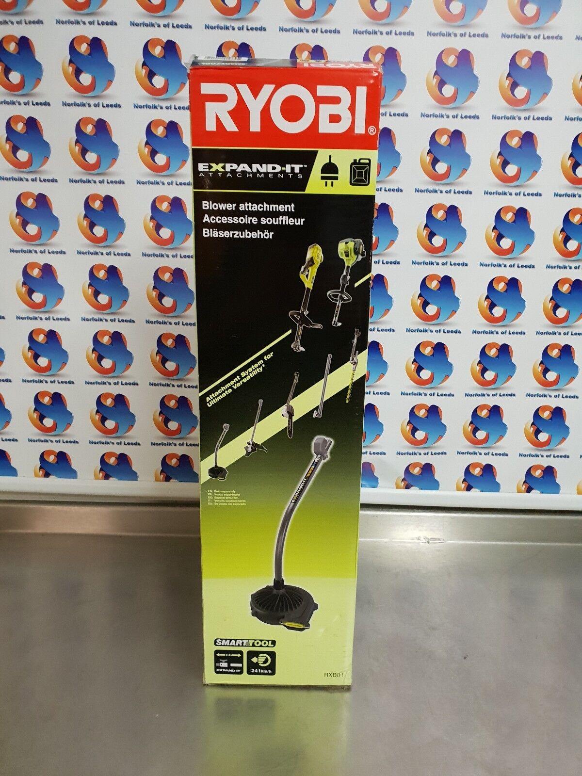 Ryobi RXB01 herramienta de Intelli-Soplador adjunto (M)