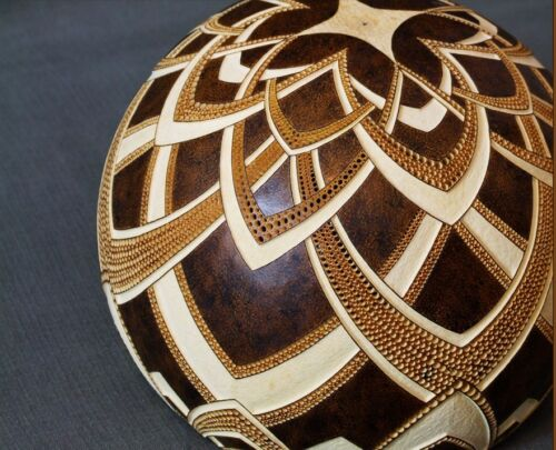 WORLDS LARGEST GOURD UP TO 5 FEET ACROSS* ARTS /& CRAFTS* COMPETITION WINNER *
