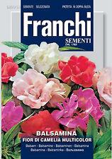 30 Semi BALSAMINA Fior Di Camelia Multicolor