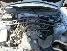 Manual Transmission 5 Speed 46l 3v Fits 05 10 Mustang 17447161 Fits Mustang Gt