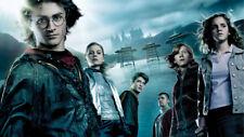 "Harry Potter Movie Art Silk Poster 20x13/""  P020"