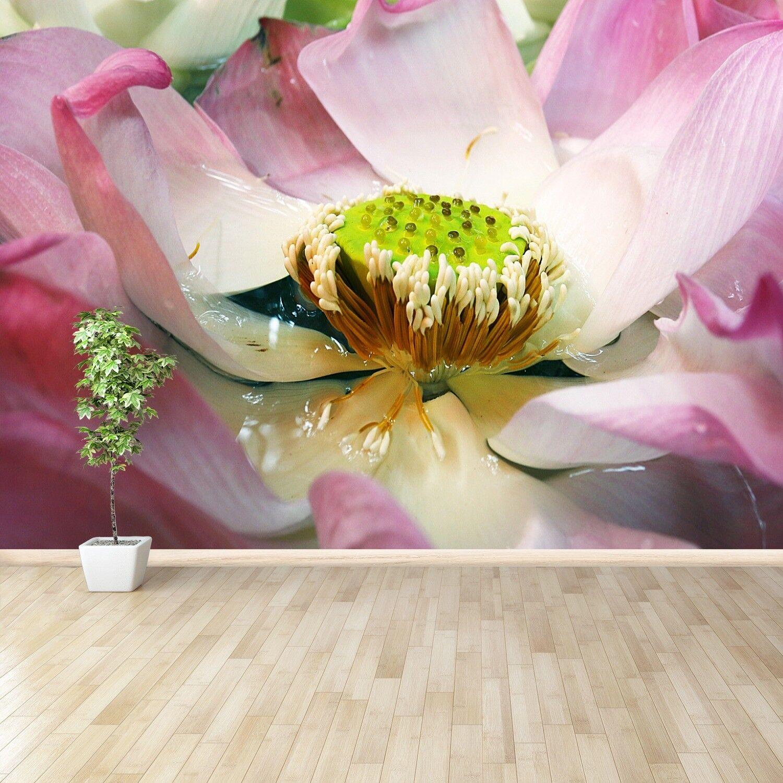 Vlies-Fototapete Fototapeten Tapete aus Vlies Poster Foto Lotus Blaume