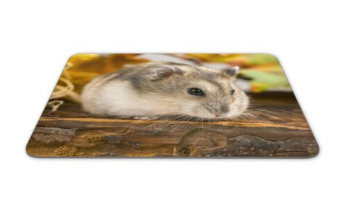 Cute Field Mouse Mouse Mat Pad Mice Rodent Hamster Kids Gift PC Computer #8500