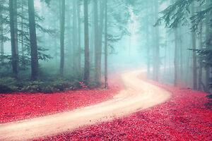 Hermoso Bosque Paisaje Niebla Lienzo cuadro #43 impresionantes de lona A1 de decoración del hogar